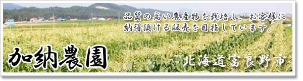 「加納農園」北海道富良野市から朝どり新鮮なとうもろこしをお届けします。