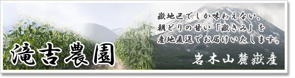 「滝吉農園」青森県弘前市から嶽地区でとれた朝どり新鮮なとうもろこしをお届けします。